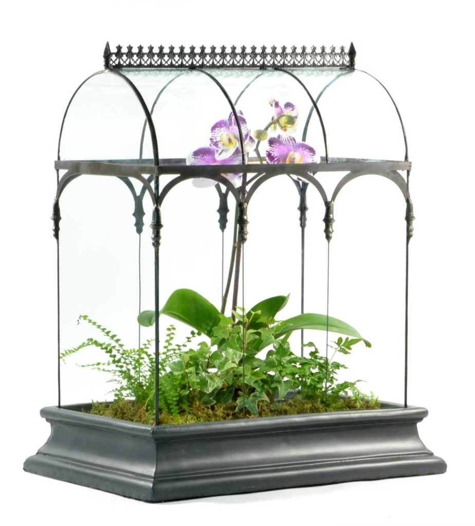Glass-Wardian-Case-With-Potted-Orchid-And-Ferns-HPotter_