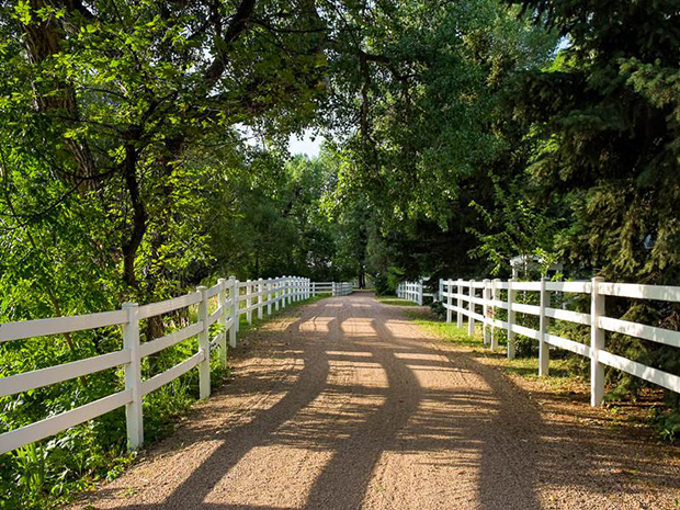 Taylor-Estate-Lakewood-CO-Sotheby's-Driveway