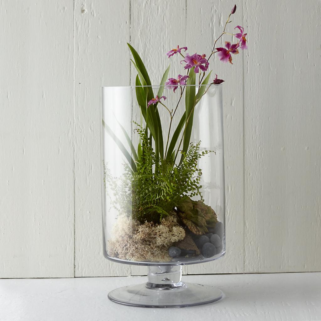 Footed-Cylinder-Terrarium-shopterrain.com