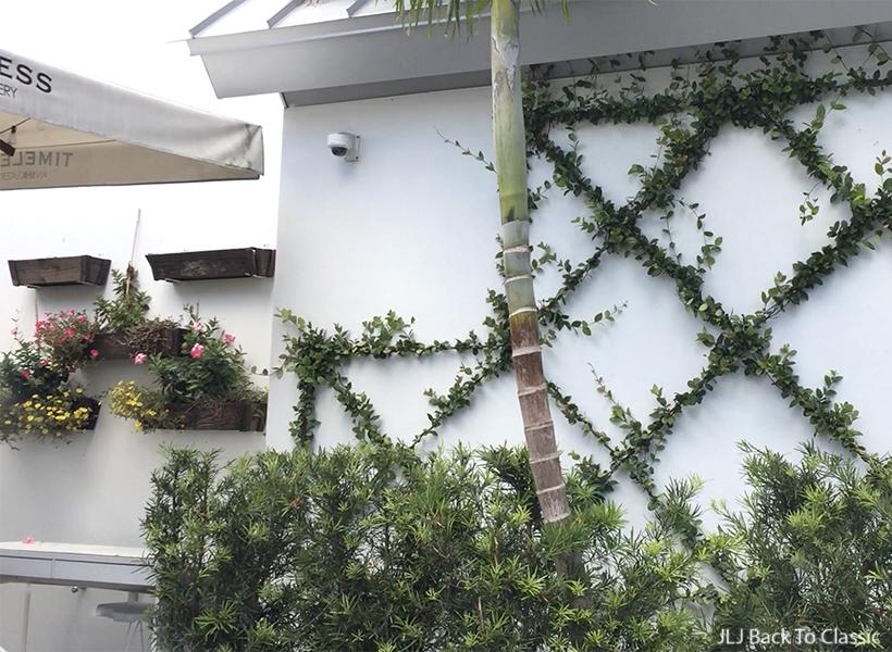 vlog-timeless-restaurant-naples-espalier-classic-garden-design-influencer-janis-lyn-johnson